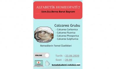 Alfabetik Homeopati - 6. Ders
